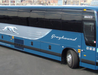 An Open Letter To Greyhound Bus